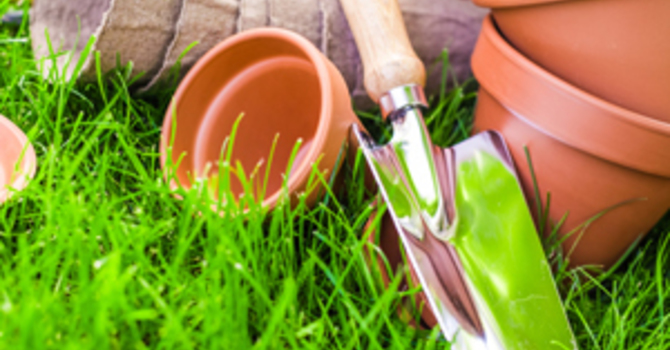 Gardening: Protecting your Knees & Elbows image